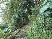 長腳登山隊的快樂行腳之(鳶山登山步道)永安宮步道.鳶山彩壁.福德坑山連走20191208 :