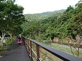 長腳登山隊的快樂行腳之內洞國家森林遊樂區  20190728: