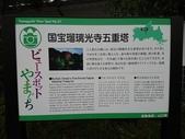 琉璃光寺-五重塔(日本山口縣山口市)  20171114: