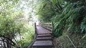 長腳登山隊的快樂行腳之五分山登山步道行腳 2014/11/09: