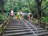 長腳登山隊的快樂行腳之新莊青年公園步道 20170618: