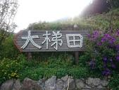 竹子湖.大梯田.青楓步道.冷水坑 20170909: