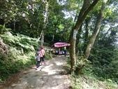長腳登山隊的快樂行腳之桃園石門山步道  20170625: