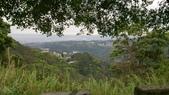 長腳登山隊的快樂行腳之翠山步道+碧溪步道+大崙頭尾親山步道:透過樹葉縫隙,可以有不錯的View