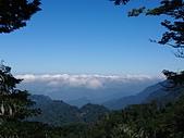 長腳登山隊的快樂行腳之大雪山國家森林遊樂區(天池.雪山神木)20201101: