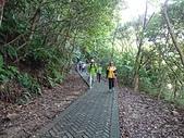 長腳登山隊的快樂行腳之翠山步道.碧溪步道.大崙尾山步道.中社步道連走20200830: