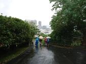 長腳登山隊的快樂行腳之劍南蝶園連走雞南山自然步道  20171119: