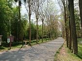 廣州.華南植物園  20180523: