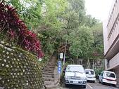圓山水神社.劍潭山.東吳大學環山步道  20200329:
