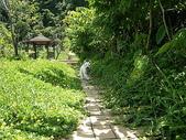 070805大雪山社區+安妮公主花園:IMGP9986