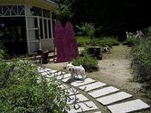 070805大雪山社區+安妮公主花園:IMGP9993