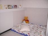 我和大白熊的小窩:1422852042.jpg