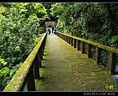 100年陡步山林:天母水管路01.jpg