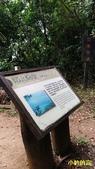 108.06.08粉鳥林-朝陽國家步道-南澳海蝕洞:粉林鳥海蝕洞16.jpg