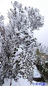 110.01.09美麗的追雪記:小觀音山02.jpg