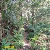 109.10.17雲海山-二格山徑路跑賽之旅:雲海山07.jpg