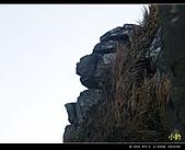 100年陡步山林:人面石.jpg
