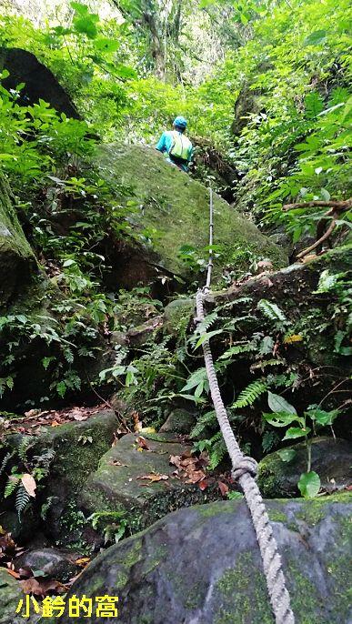 109.05.16攀爬雞心尖遇雨撒退:雞心尖30.jpg