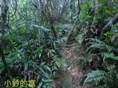109.10.10七汐農路-新山-夢湖:新山13.jpg