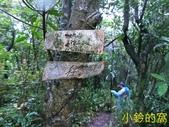 109.10.10七汐農路-新山-夢湖:新山05.jpg