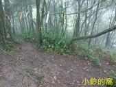 109.10.10七汐農路-新山-夢湖:新山19.jpg