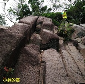 109.08.09金面山親山步道:剪刀石山19.jpg