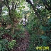 109.10.17雲海山-二格山徑路跑賽之旅:雲海山08.jpg