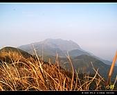 100年陡步山林:大屯溪古道60.jpg