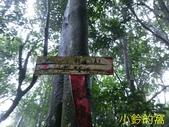 109.10.10七汐農路-新山-夢湖:新山20.jpg