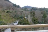 現代與傳統京阪七日遊ADY2(二):1192238462.jpg
