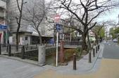 現代與傳統京阪七日遊ADY2(二):1192238429.jpg