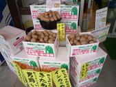 北海道增肥之旅DAY2:1740064147.jpg