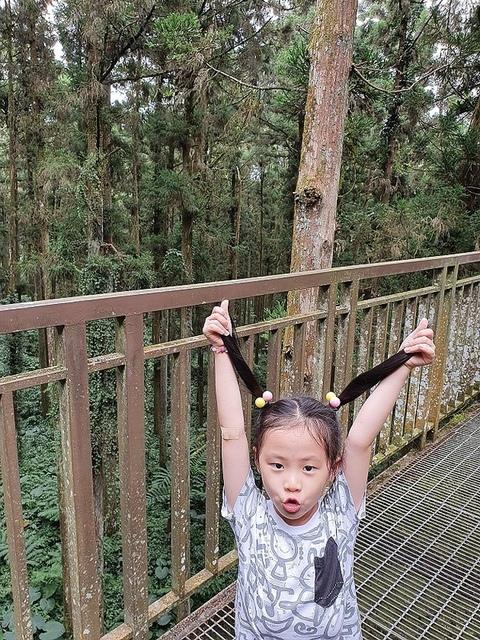 18.jpg - 溪頭、妖怪村、文化鹿行旅、文化路夜市美食