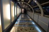 台灣玻璃博物館、Pause Bonheur甜點實驗室、宮賞藝術會館:14.JPG