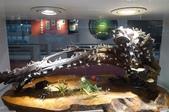 台灣玻璃博物館、Pause Bonheur甜點實驗室、宮賞藝術會館:20.JPG