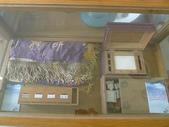 獄政博物館、檜意森活村、左岸假期飯店:11.JPG