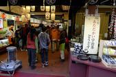 現代與傳統京阪七日遊ADY2(二):1192238479.jpg