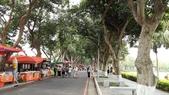 古坑綠色隧道公園、蜜蜂故事館、MLD台鋁、 日日燒 、喬合大飯店、MIOPANE  SOGO忠孝店:01.jpg