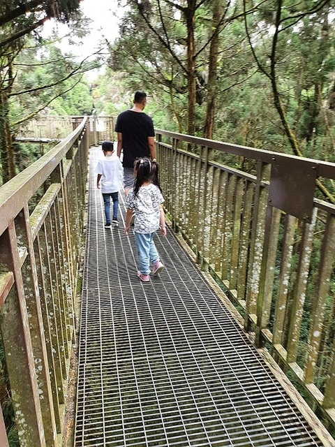 17.jpg - 溪頭、妖怪村、文化鹿行旅、文化路夜市美食