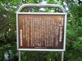 東京流浪十三天--DAY7 (三):1245698124.jpg