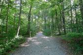童話與森林之德國行DAY4(上):1553601376.jpg