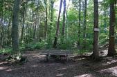 童話與森林之德國行DAY4(上):1553601377.jpg