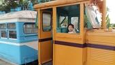 古坑綠色隧道公園、蜜蜂故事館、MLD台鋁、 日日燒 、喬合大飯店、MIOPANE  SOGO忠孝店:06.jpg