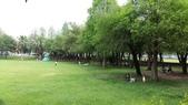 古坑綠色隧道公園、蜜蜂故事館、MLD台鋁、 日日燒 、喬合大飯店、MIOPANE  SOGO忠孝店:03.jpg