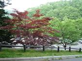 北海道增肥之旅DAY2:1740064141.jpg