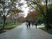 明孝陵:DSC05389.JPG