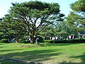 中山陵&靈谷寺:DSC09890.JPG