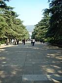 中山陵&靈谷寺:DSC09861.JPG