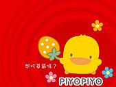 黃色小鴨素材:黃色小鴨 (13).jpg