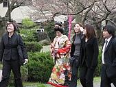 20090324Part-7日本戰國櫻花戀:調整大小IMG_3533.jpg